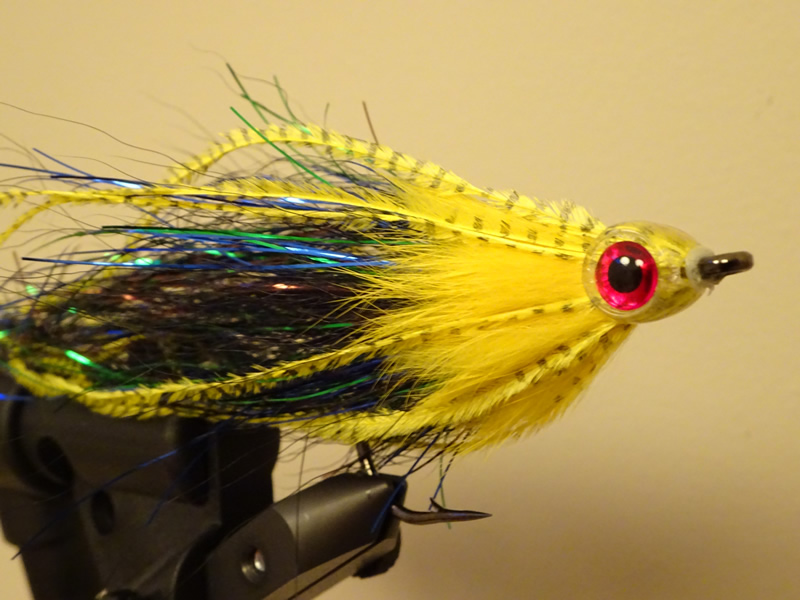 "Photo of Snoek streamer ""Envy"""