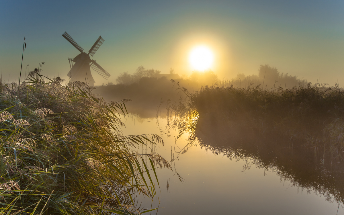Photo of Snoeken in de polder TIPS