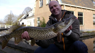 Photo of Doodaas vissen in de winter met Sweetlake Fishing